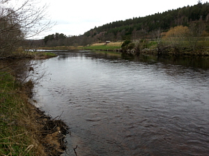 River Spey, Nethy Pool