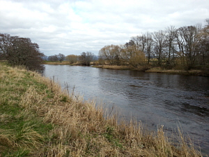 Above Lackghie Bend, River Spey, Abernethy