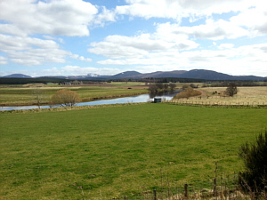 The Bulwark, River Spey, Abernethy