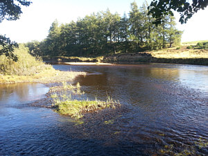 Fishing the Spey at Aviemore, above the Pike Pool