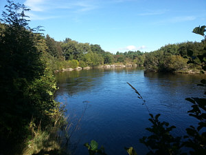 Fishing the Spey at Aviemore - Druie Pool