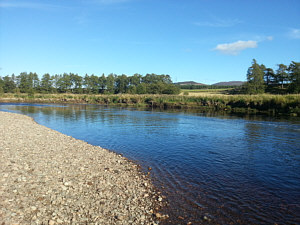 Fishing the Spey at Aviemore, Stoney Beach Pool