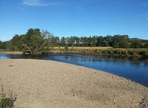 Sea Trout and Salmon fishing on the Spey at Aviemore, Stoney Beach Pool Tail