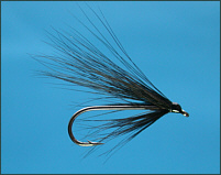 Simple Sea Trout Single Fly
