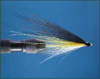 Black and Yellow Needle Tube Fly
