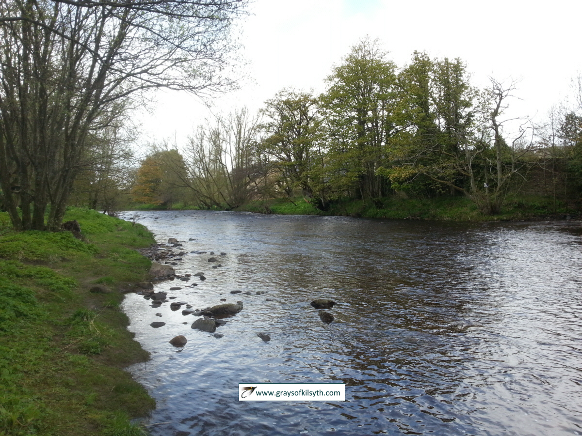 River Nevern Fishing River Wear Fishing
