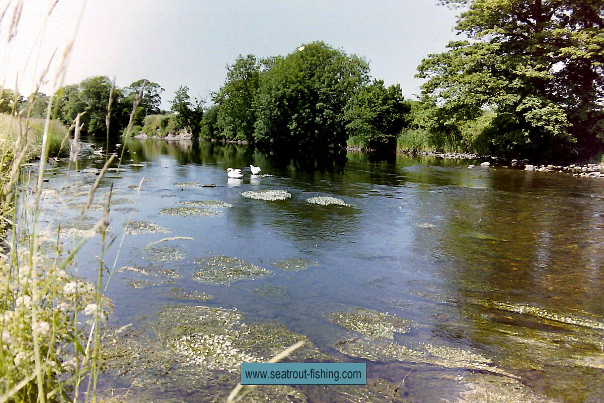 River Nevern Fishing River Annan Sea Trout Fishing