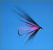 Black Hairwing sea trout fly