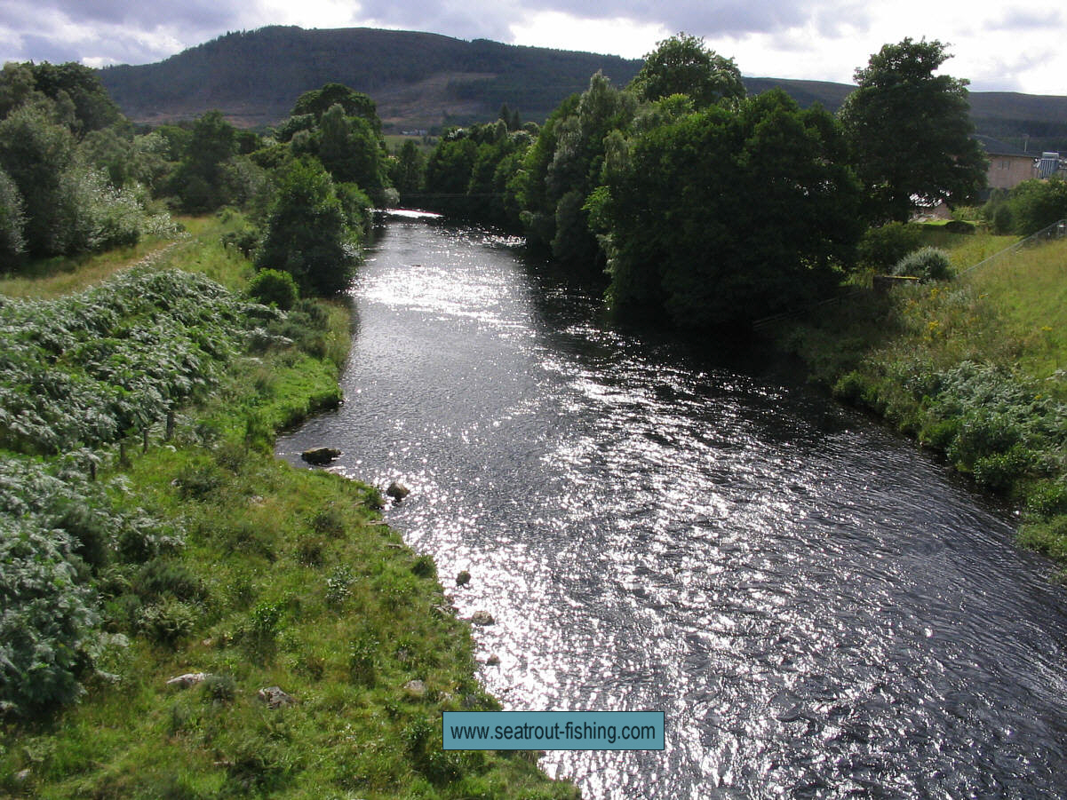The river dovey for River trout fishing