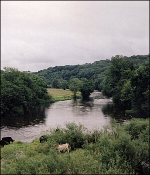 The River Towy