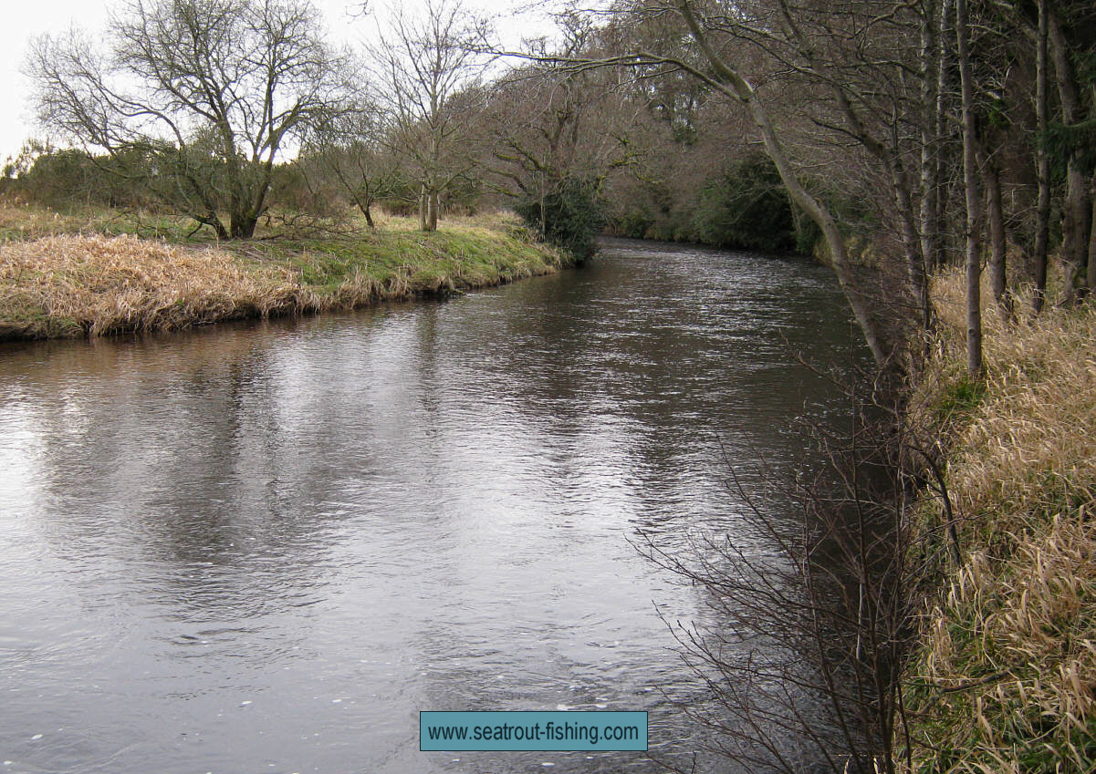 River Nevern Fishing River Sea Trout Fishing